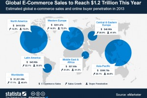 Statistiche E-Commerce 2013